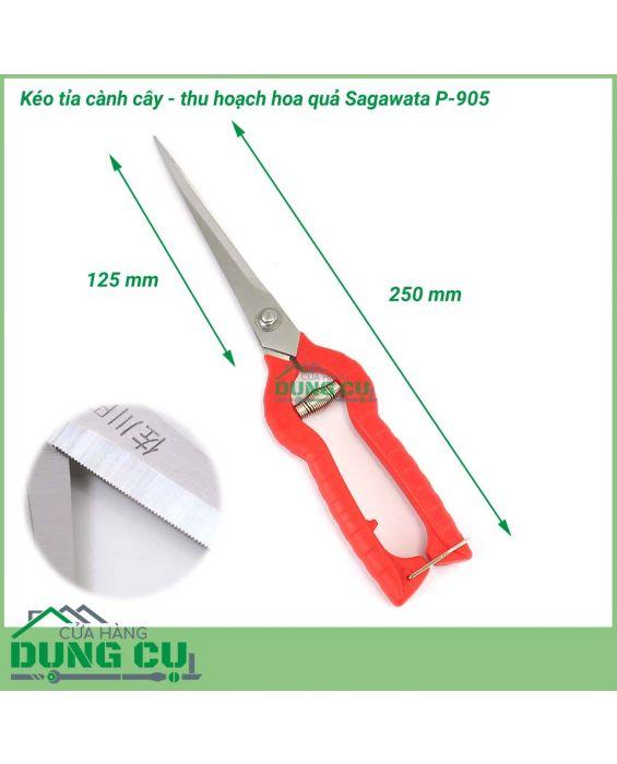 Kéo cắt tỉa cành cây thu hoạch hoa quả Sagawata P-905