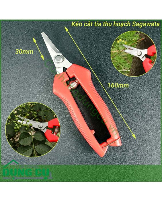 Kéo cắt tỉa thu hoạch lưỡi cong P916